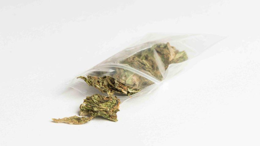 Marijuana file photo