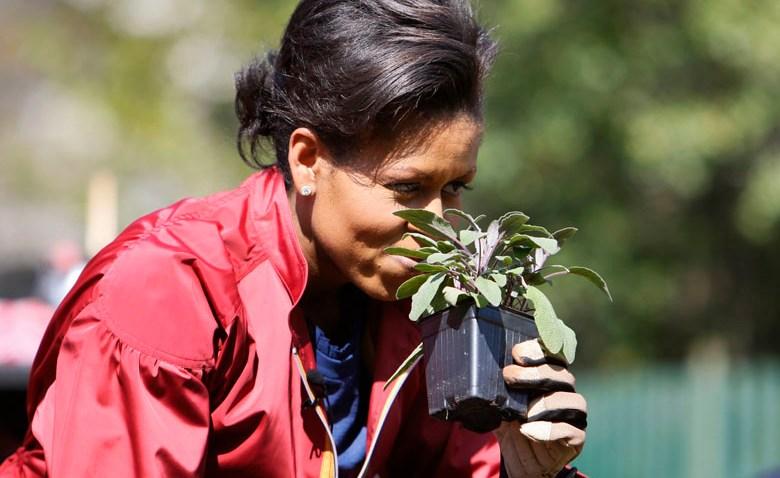 041009 Michelle Obama smell sage