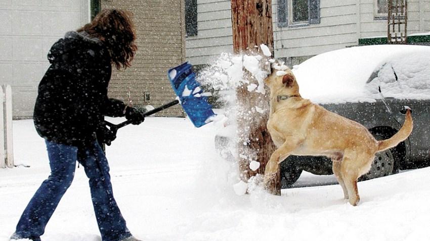 121908 Winter Weather Iowa Snow Shovel