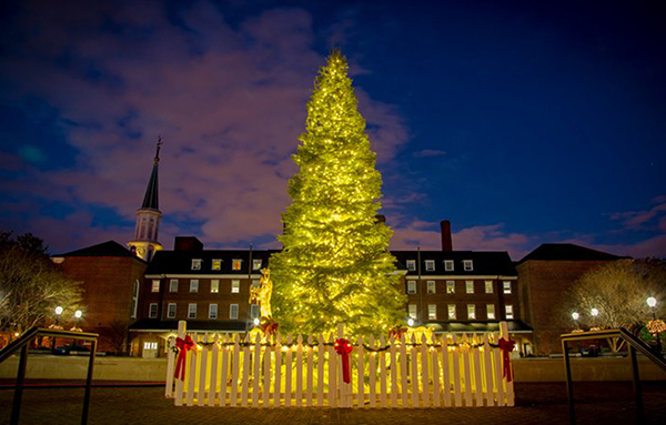 600-Tree_at_Market_Square_Holiday_CREDIT_K_Summere_for_Visit_Alexandria-720x480-c83ec91d-d9dd-431f-ac04-37dbdcb2a84b1