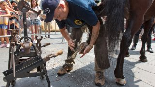 Police Horseshoe Fixers