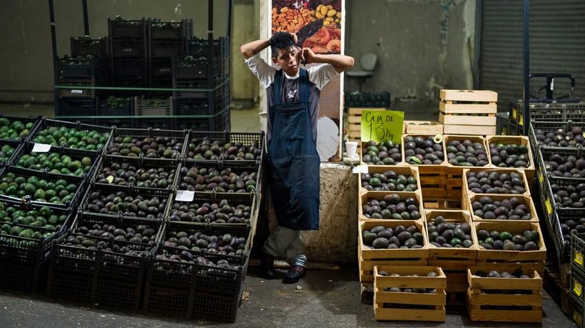 Mexico Tariffs Avocado