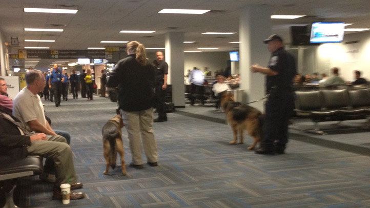 Dulles Airport Delays Bomb Sniffing Dogs Andrew Pedersen 092412