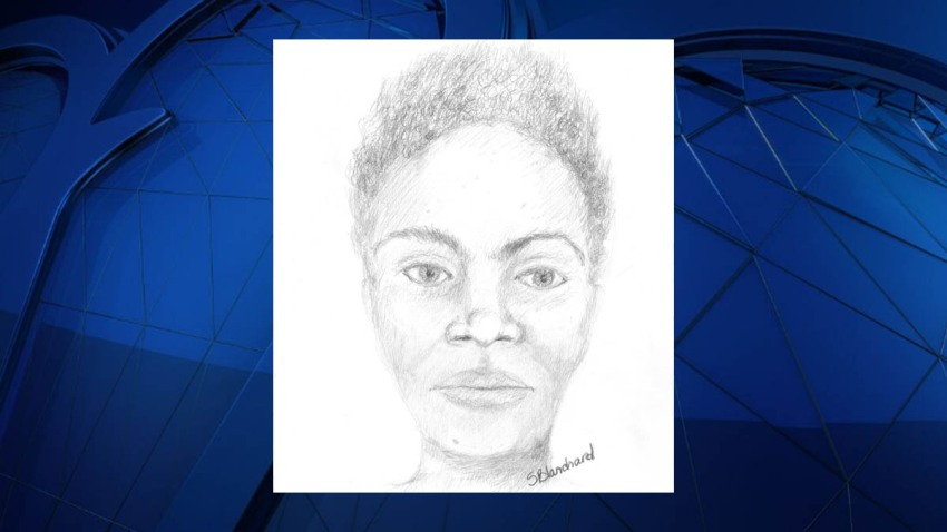 Forestville Murder Victim Sketch 041817