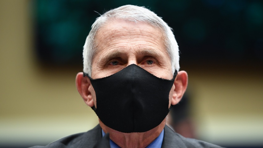 """In this June 23, 2020, file photo, director of the National Institute for Allergy and Infectious Diseases Dr. Anthony Fauci testifies before the US Senate Health, Education, Labor, and Pensions Committee hearing to examine COVID-19, """"focusing on lessons learned to prepare for the next pandemic"""", on Capitol Hill in Washington, DC."""