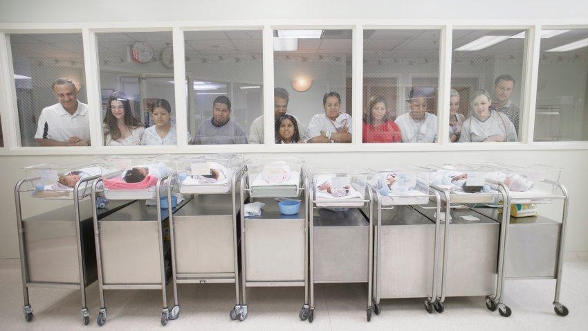 New parents watching babies in hospital nursery