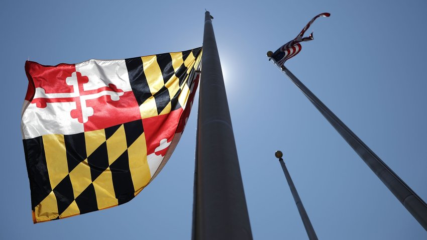 The Maryland state flag