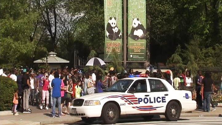 National Zoo Stabbing