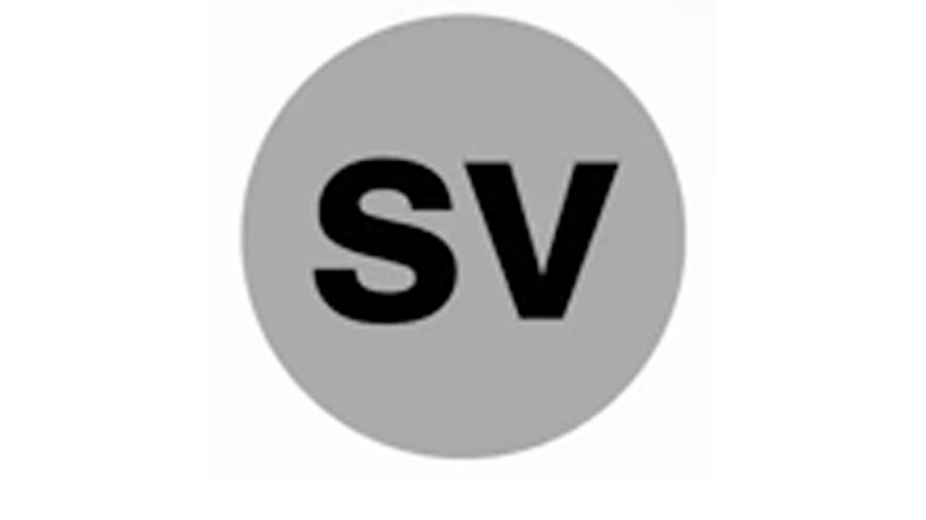 Silver Line Logo NEW