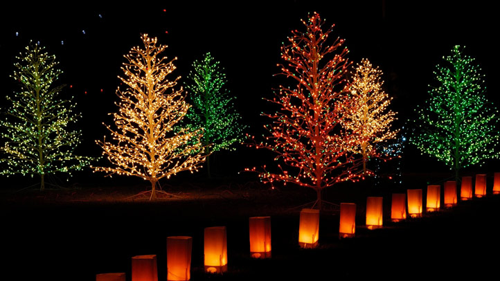 annapolis_lights