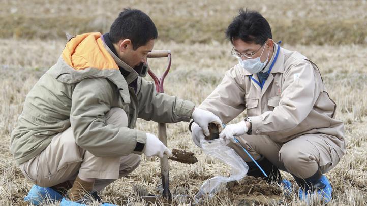 ap-fukushima-workers-soil-radiation-nuclear-plant