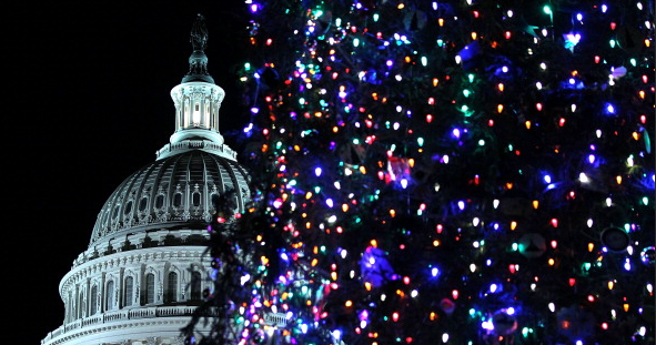 capitol_christmas_tree