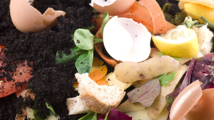 compost-shutterstock_25833856