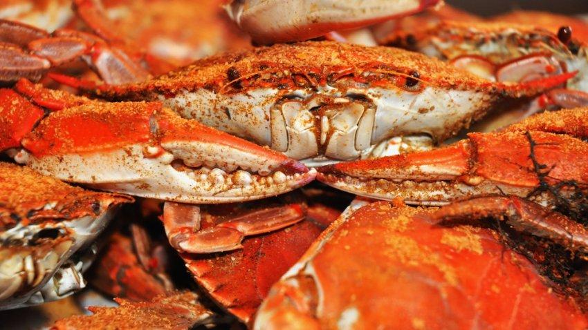 crabs-shutterstock_58451212