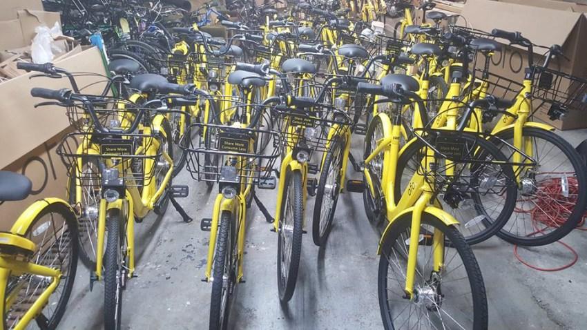 ofo bikes in velocity warehouse