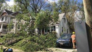 tree fallen onto home