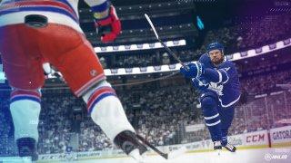 NHL simulation