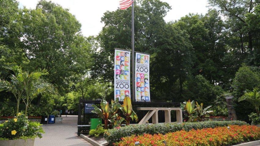 zoo_fencing_entrances