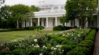 A view of the restored Rose Garden is seen at the White House in Washington