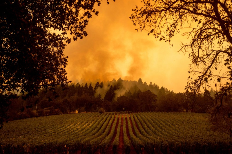 PHOTOS: Napa, Sonoma County Residents Wake Up to Fires