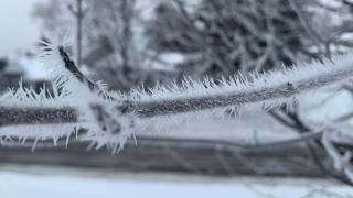 Ice forming on trees amid heavy snowfall in Duluth, Minnesota.