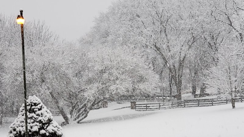 Super Bowl Sunday Snow: News4 Viewers' Photos
