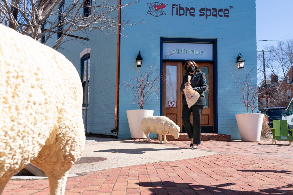 Vice President Kamala Harrisleaves the store, Fibre Space, after a conversation with its owner and employees about COVID-19's impact on small business, at the shop in Alexandria, Va., Wednesday, March 3, 2021.