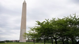 A person sitting under a group of trees near the Washington Monument in Washington May 3.