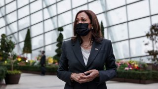 U.S. Vice President Kamala Harris takes questions from media as she visits the Flower Dome at Gardens by the Bay, following her foreign policy speech, in Singapore Tuesday, Aug. 24, 2021.