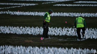 white flags on the National Mall covid deaths