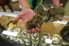 Spending Plan Protects Medical Marijuana Laws From Feds