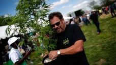 For Your Weekend: Easter Karaoke, Cannabis Festival, Yoga