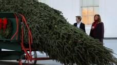 Tree Farmer Abandoned Picked for White House Christmas