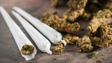 DC Scales Back Punishment for Smoking Pot in Public