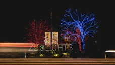 Top 4 Reasons to Go to ZooLights