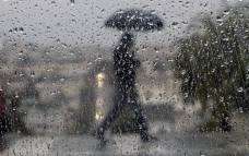 Rain, Wind Gusts of Up to 40 MPH Possible in DC Mon.