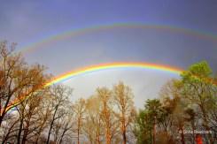 See Your Photos of Thursday's Rainbow