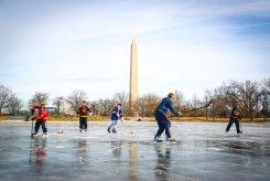 Viewer Photos Illustrate the Frozen D.C. Region