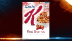 Kellogg Recalls Special K Red Berries for Glass Fragments
