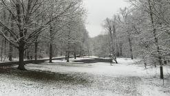 Light Snow Leaves Roads Wet for Morning Commute