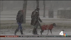 People Enjoy Picturesque National Mall in the Snow