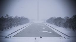Photos: Winter Storm Blankets the DC Area in Snow