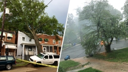 Damaging Storms Cause Havoc Across DC Area