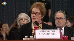 Amb. Yovanovitch: Former VP Biden 'Never Discussed Burisma WIth Me'