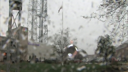 Time Lapse Video of Rain, Gusting Wind