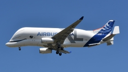 Airbus Beluga XL Whale Takes Flight for the First Time