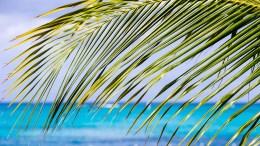 7 Turks & Caicos Adventures