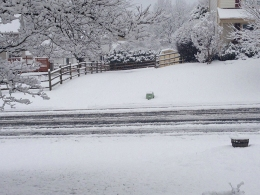 PHOTOS: Snow Blankets Parts of DC Area