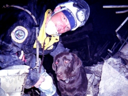 Local 9/11 Search-and-Rescue Dog Dies