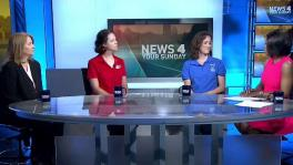 News 4 Your Sunday: Clear the Shelters